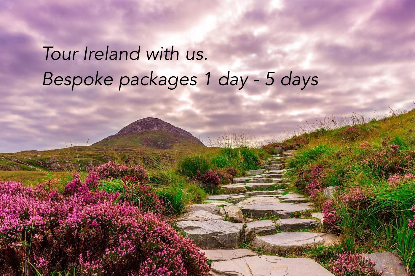driver available for tours of ireland